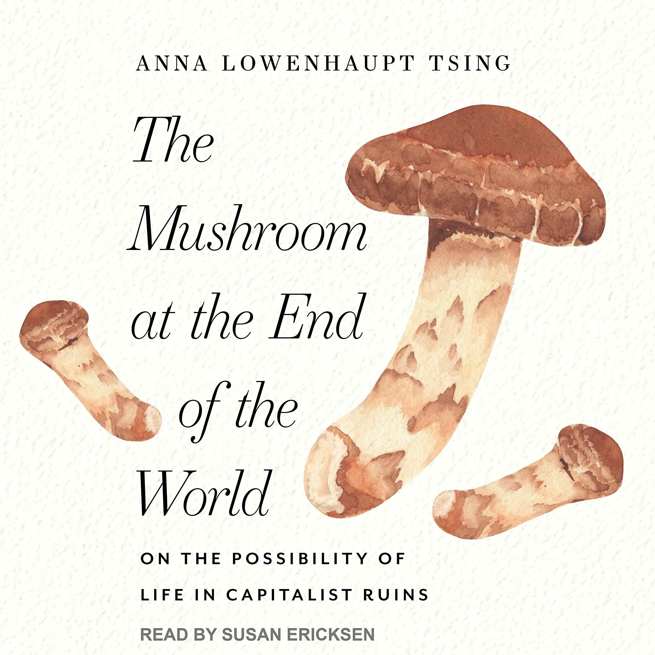 Pin by 𝕬𝖓𝖓𝖒𝖆𝖗𝖎𝖊 on Mushroom ᱫ | End of the world, Stuffed
