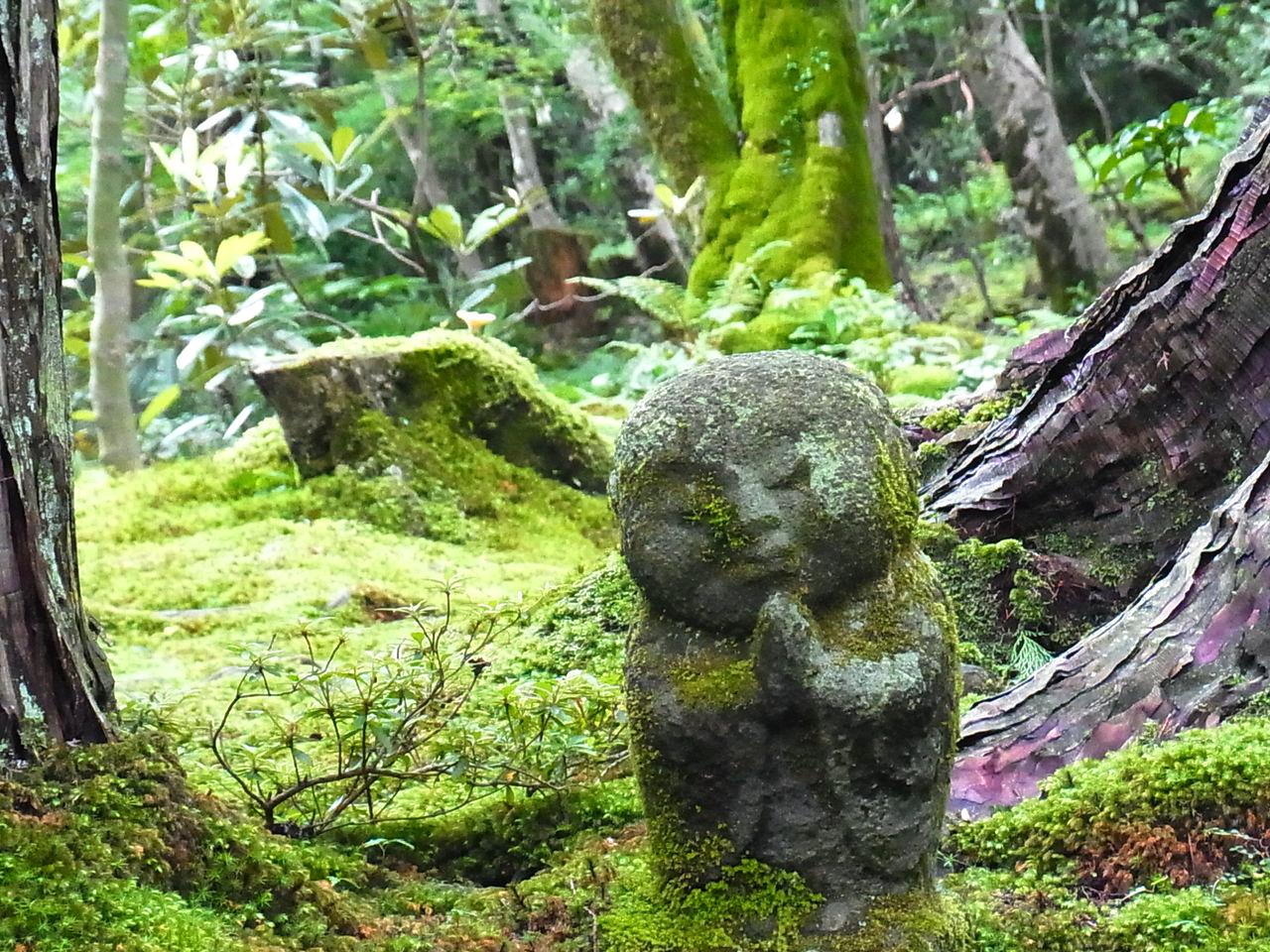 Moss covered jiz buddha statue sanzen in temple and - Moosgarten kyoto ...