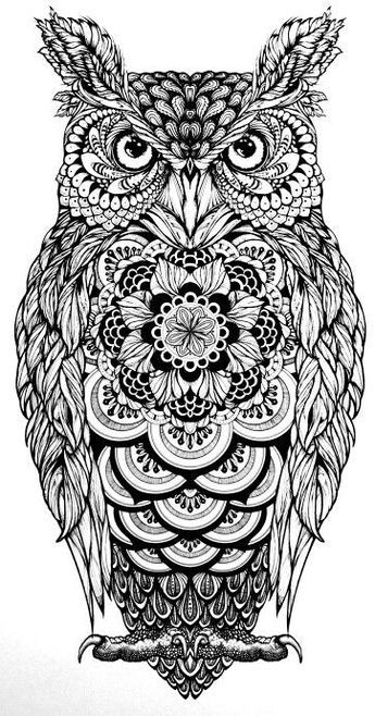 Tattoo Eule Tatoos Owl Zentangle Ausmalbilder Owls Eule Tattoo Mehr Owl Coloring Pages Owls Drawing Owl Tattoo Design