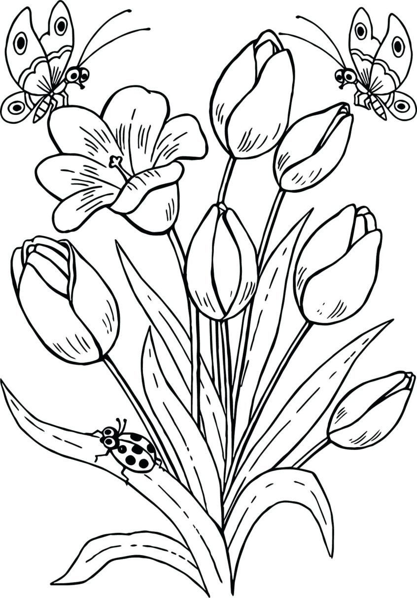 Senior Coloring Pages