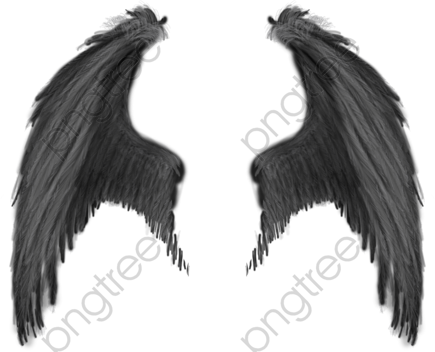 Millions Of Png Images Backgrounds And Vectors For Free Download Pngtree Angel Wings Png Demon Wings Wings Drawing