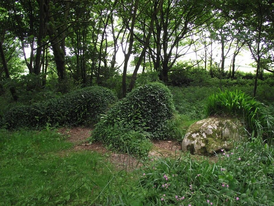 Grass Sculpture In The Lost Gardens Of Heligan Lost Gardens Of Heligan Lost Garden Amazing Gardens