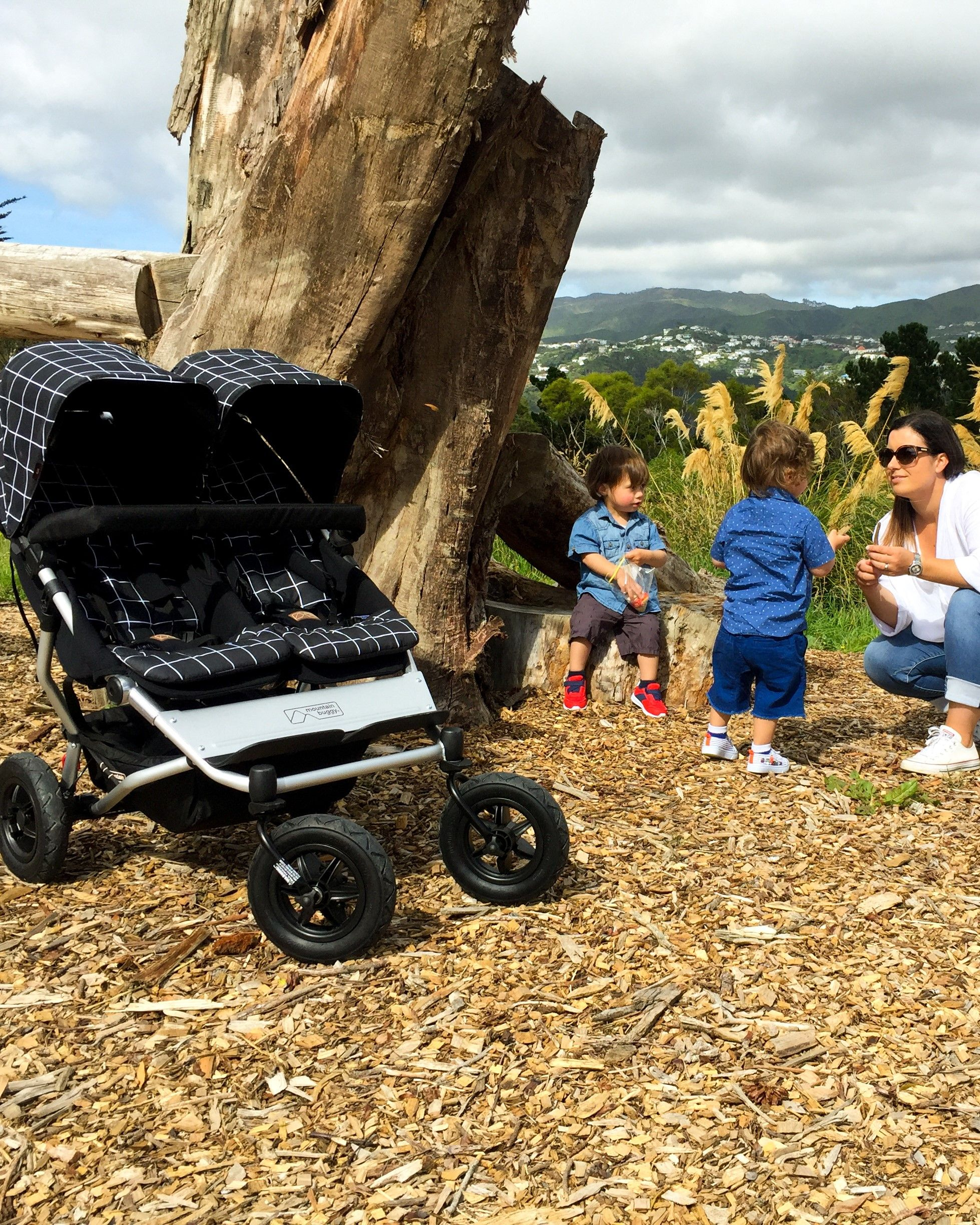 Mountain Buggy Duet Review Mountain Buggy Duet Review