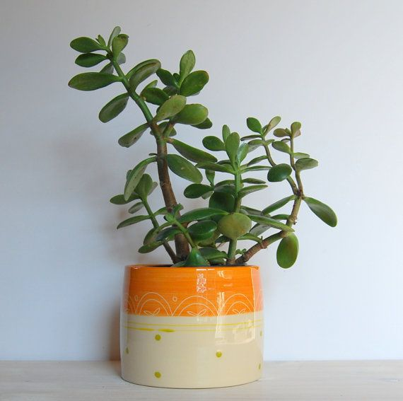 Utensil Pot Plant Ceramic Container Colorful And Pottery Orange Flower