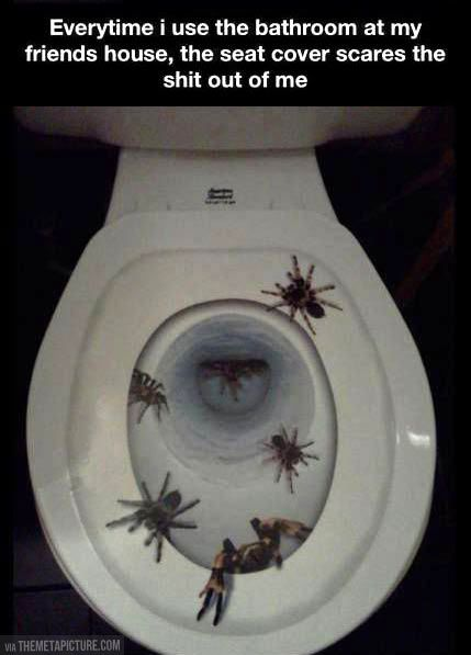 Large Toilet Seat Covers. Scariest toilet seat cover ever  Seat covers Scary and Toilet