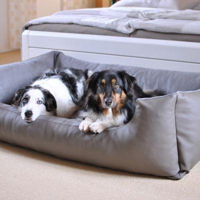 4e2fdf5ce84c Panier Pawz   Pepper Delano pour chien Coussin pour les grands chiens, haut  rebord et
