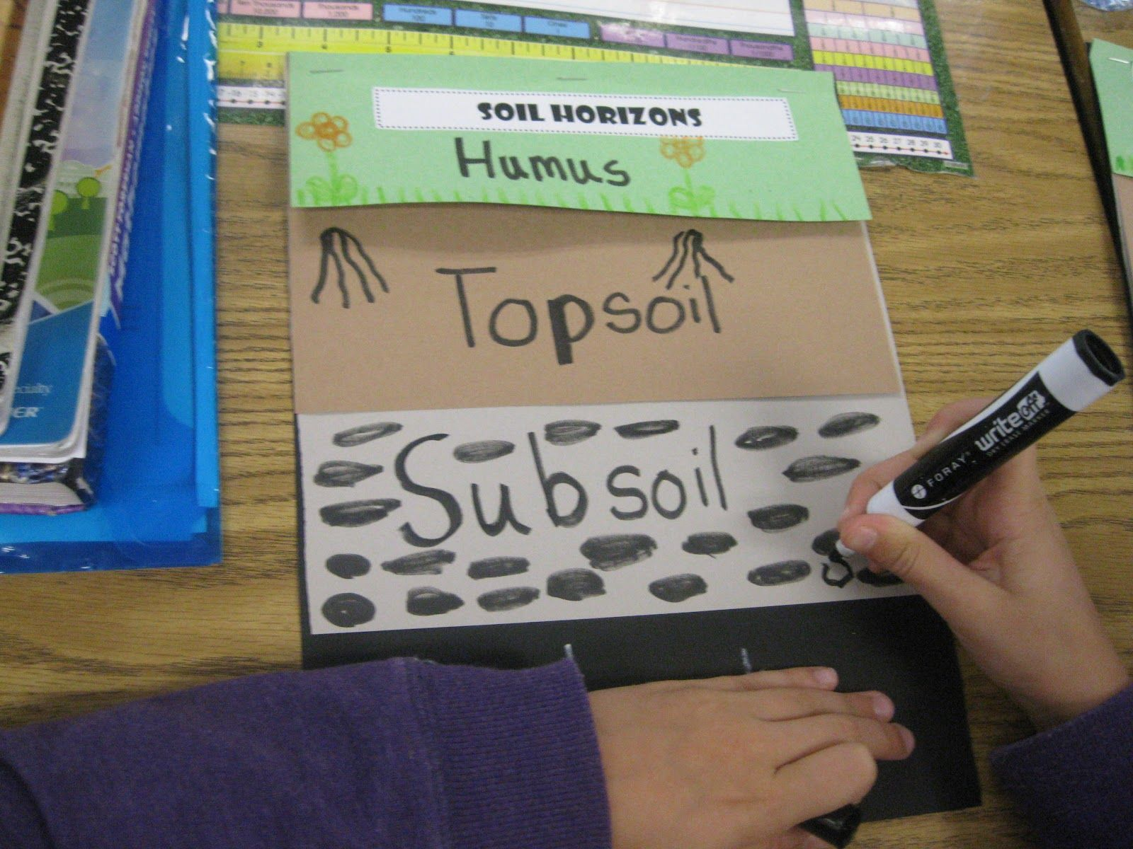 worksheet Soil Layers Worksheet third grade thinkers science a soil study layers of soil