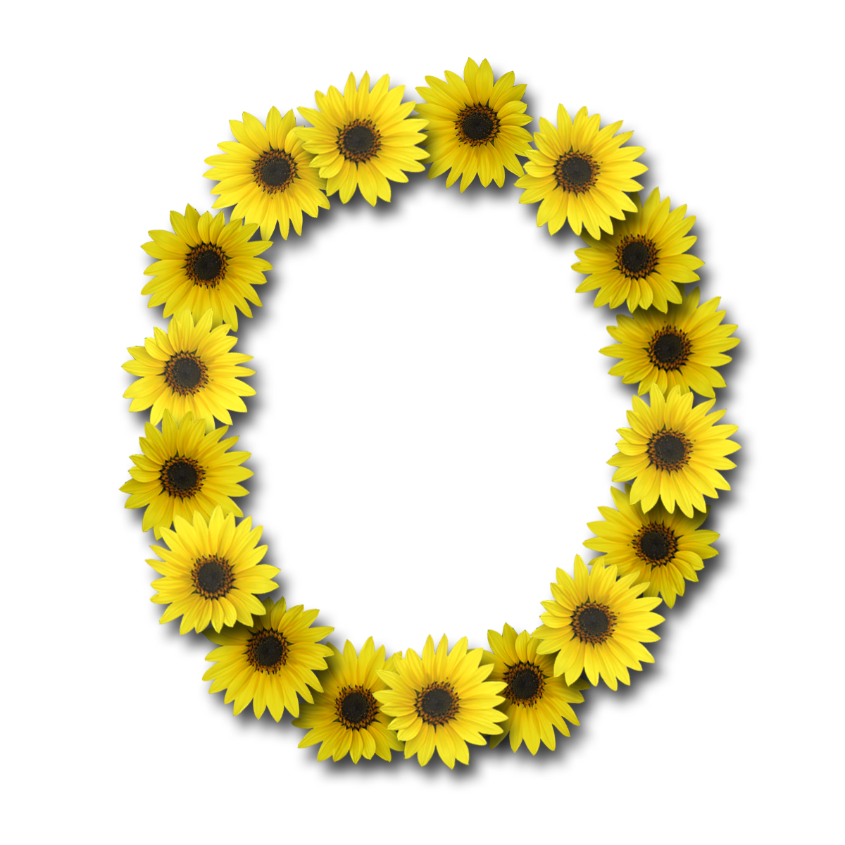 Capital Letter O1 Sunflower 1200x1200