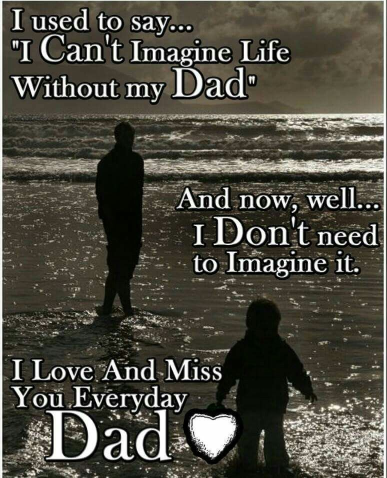 Single For The Holidays Quotes: I Miss My Dad Every Single Day. I Miss Him The Most Around