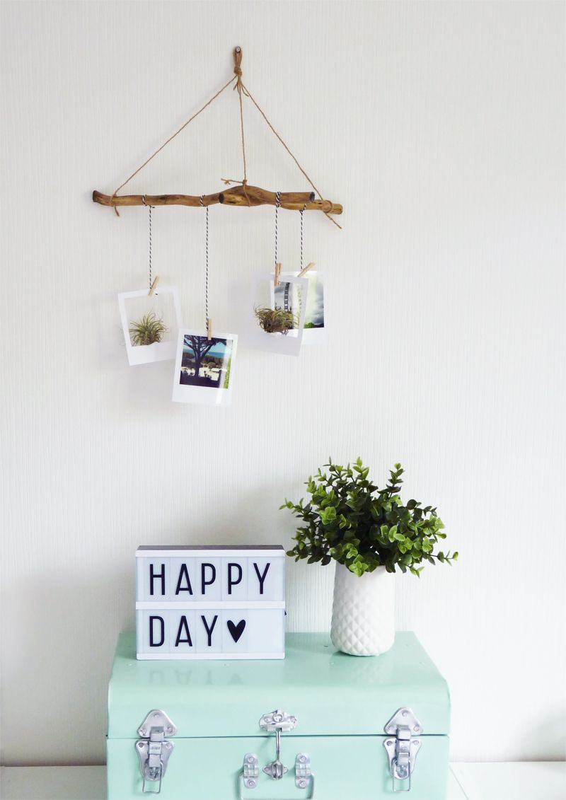 diy suspension polaroid air plant crafts pinterest id e d co polaroid deco moderne et. Black Bedroom Furniture Sets. Home Design Ideas
