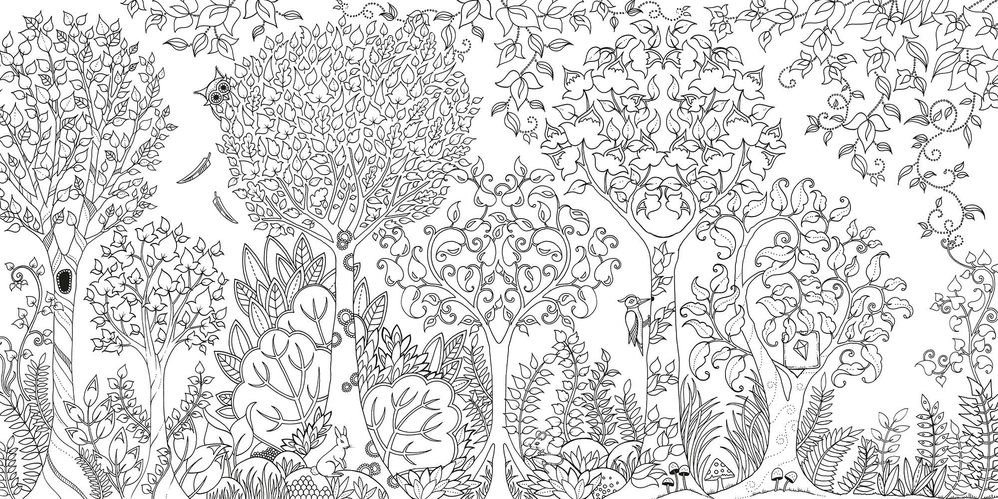 Adult Coloring Books are all the Rage Enchanted forest