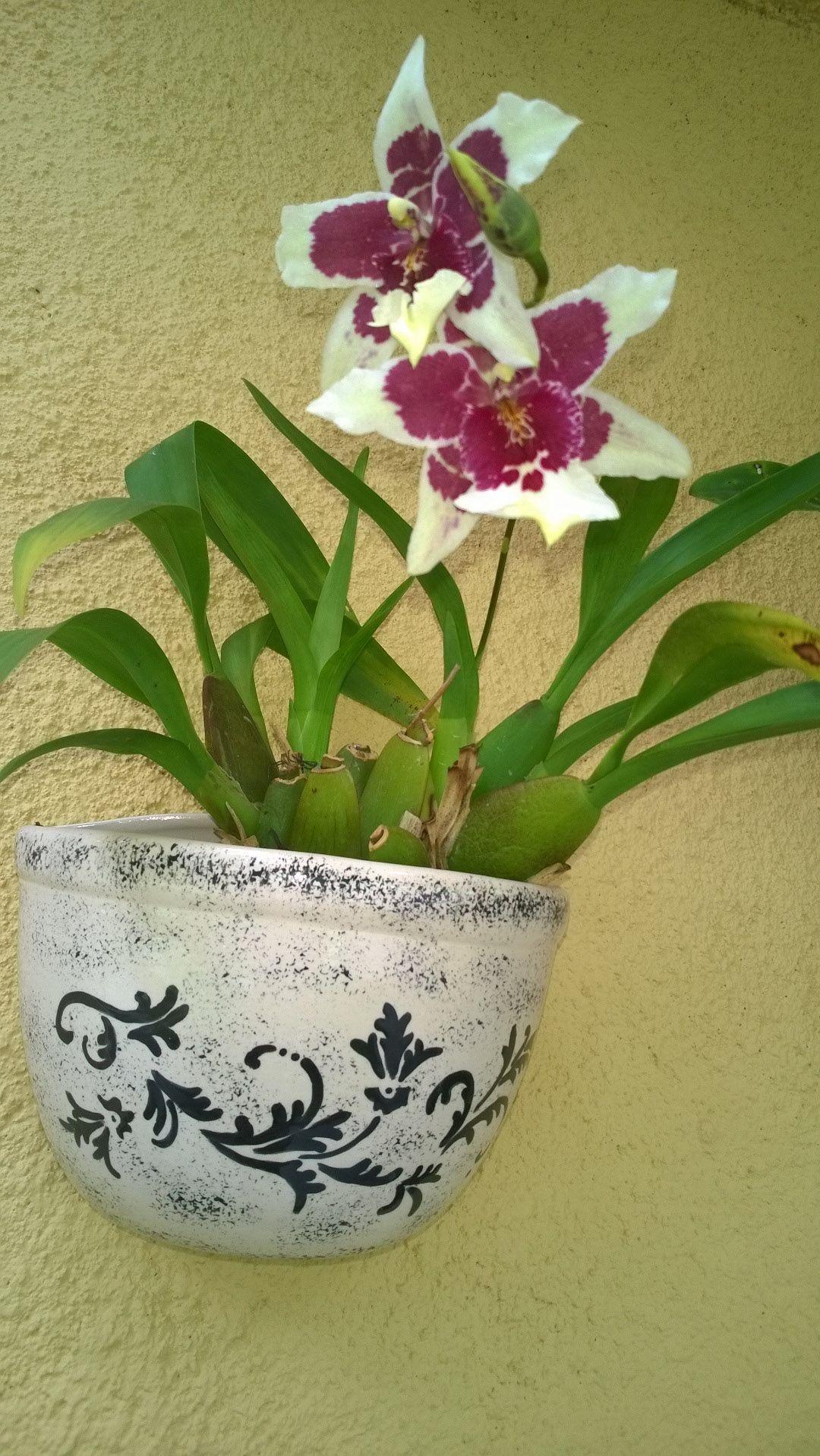 Vaso de ceramica pintado  em baixo esmalte com orquídea natural.