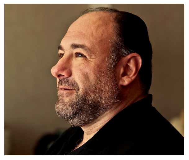 When Life Imitated Art, James Gandolfini 1961 - 2013 - Alison*s Blog