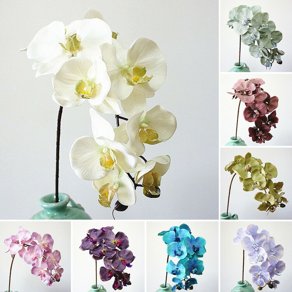 Dv 10 Heads Artificial Butterfly Orchid Fake Flower Phalaenopsis Home Decor Nov Fashion Home Garden Artificial Flowers Fake Flowers Artificial Silk Flowers