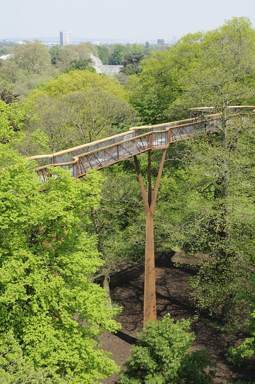 Pasarela peatonal entre árboles / Marks Barfield Architects