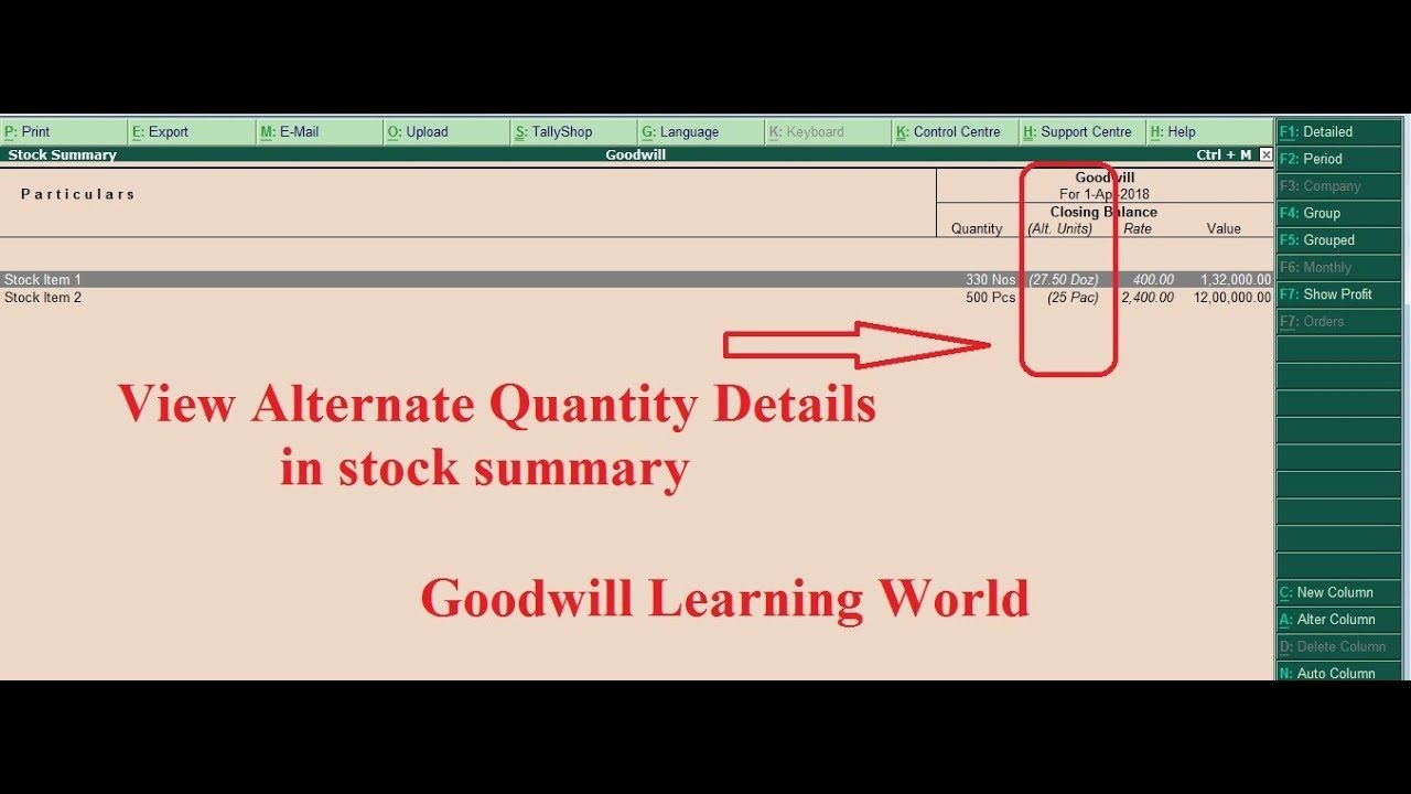 Tally Tdl For View Alternate Quantity In Stock Summary View Tally Add O In 2020 Ads Summary Free Download