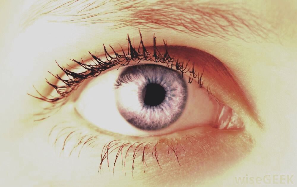 Putting Vaseline On Eyelashes Helps Them Grow And Removes