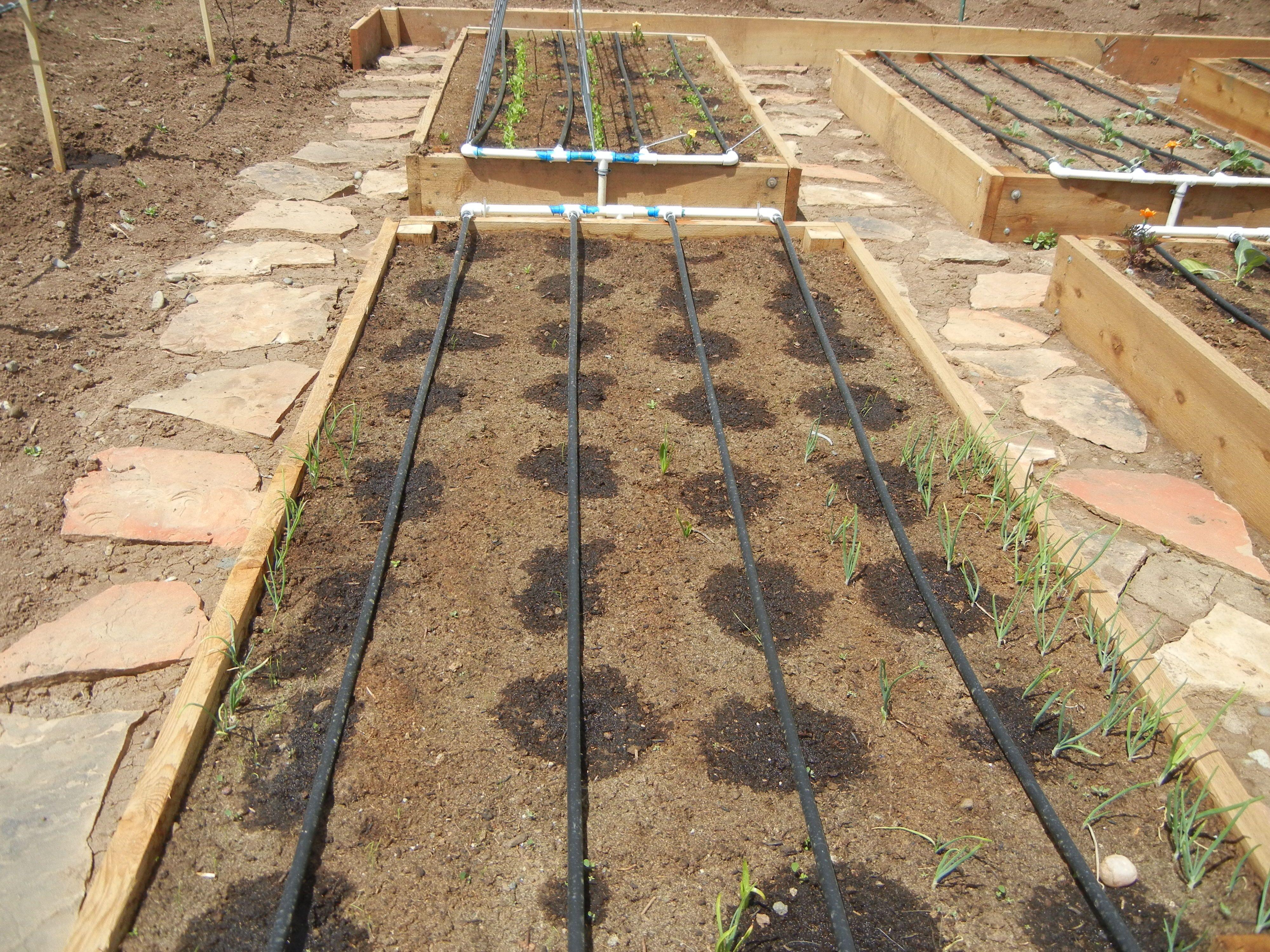 garden drip system irrigation