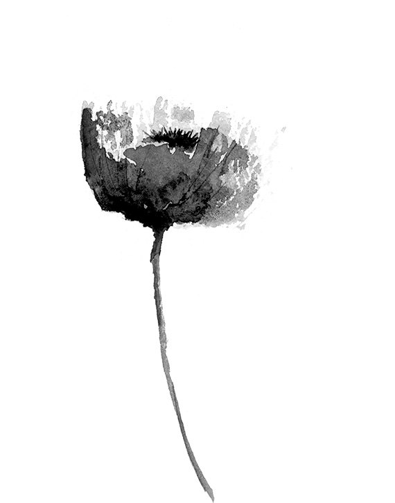 Black And White Poppy Print From Original Watercolor Flower Print