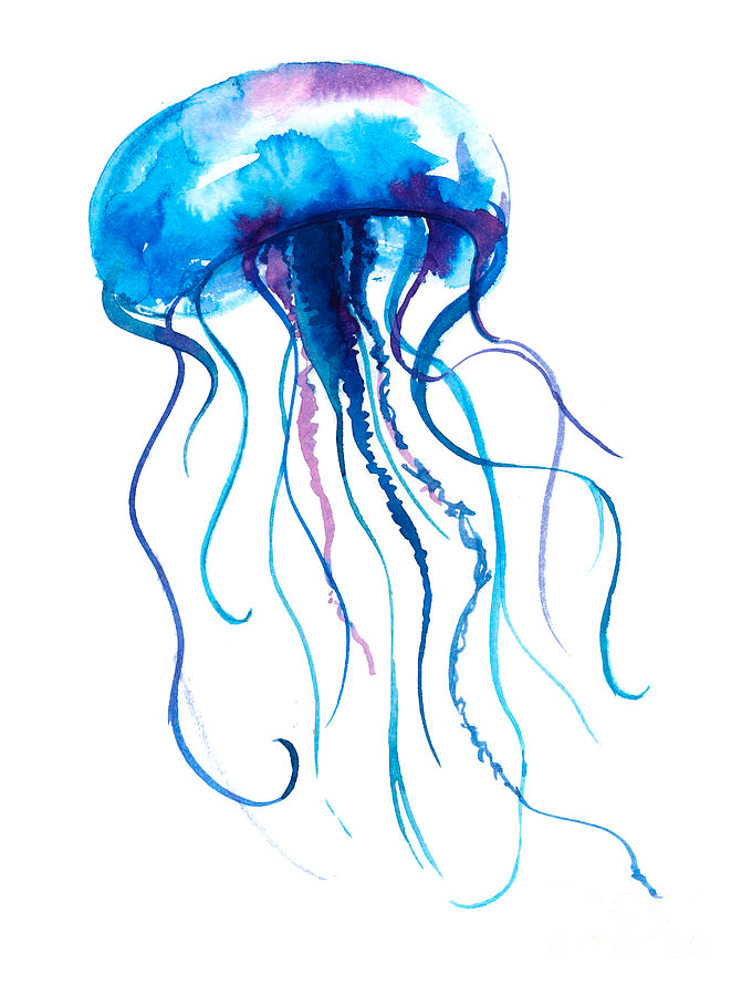 Google Image Result For Https Images Fineartamerica Com Images Artworkimages Mediumlarge 2 1 Jelly In 2020 Jellyfish Painting Watercolor Illustration Medusa Painting