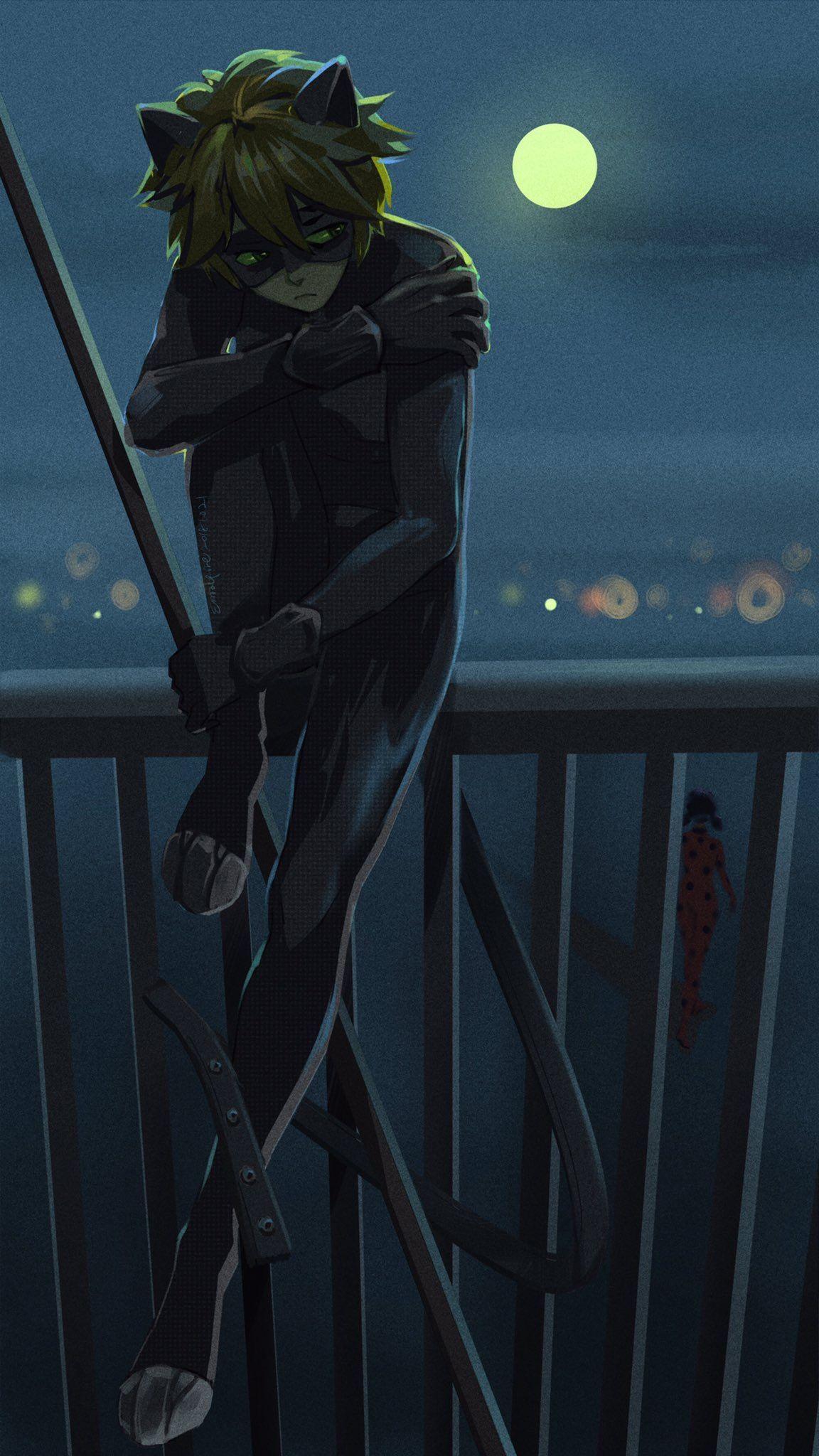 Chat Noir Anime Chat Noir Chat Noir Et Ladybug Chat Noir Chat Blanc