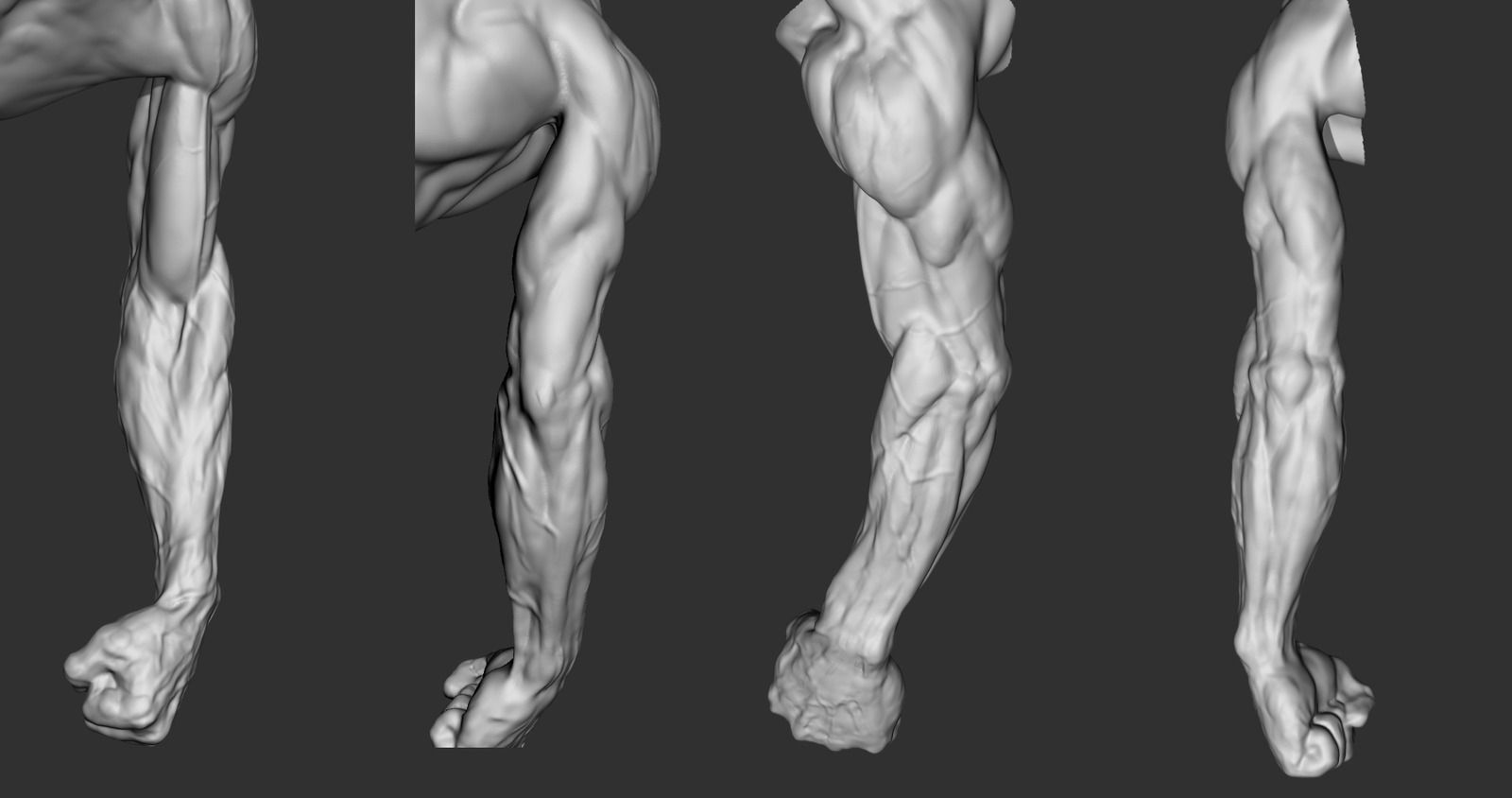 anatomy ref | Anatomy Reference | Pinterest | Anatomy, Arms and ...