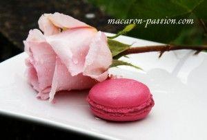 maca rose 1