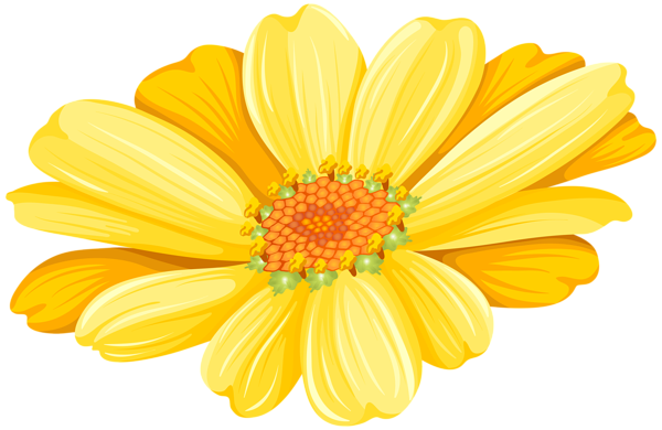 Hand Drawn Yellow Flower Transparent Png Premium Image By Rawpixel Com Sasi Yellow Flowers Flower Illustration Flower Drawing
