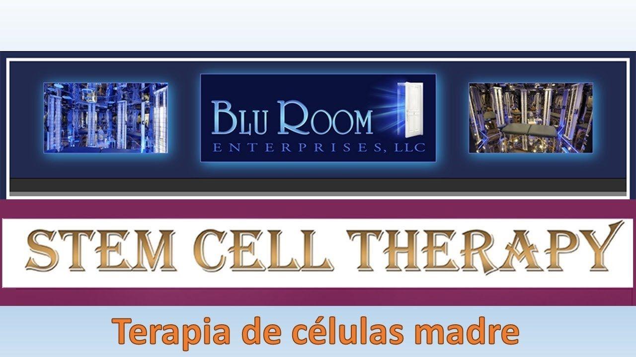 Noticias del Cuarto Azul  Febrero 2017: Las células madre y testimonios ...