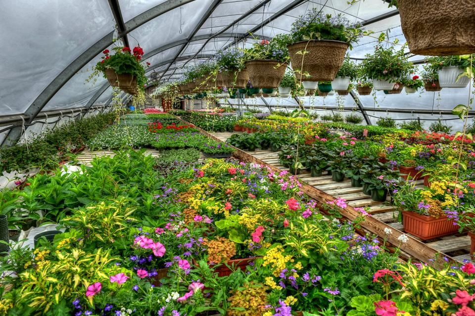 The 10 Best Garden Centers And Nurseries In Michigan With Images