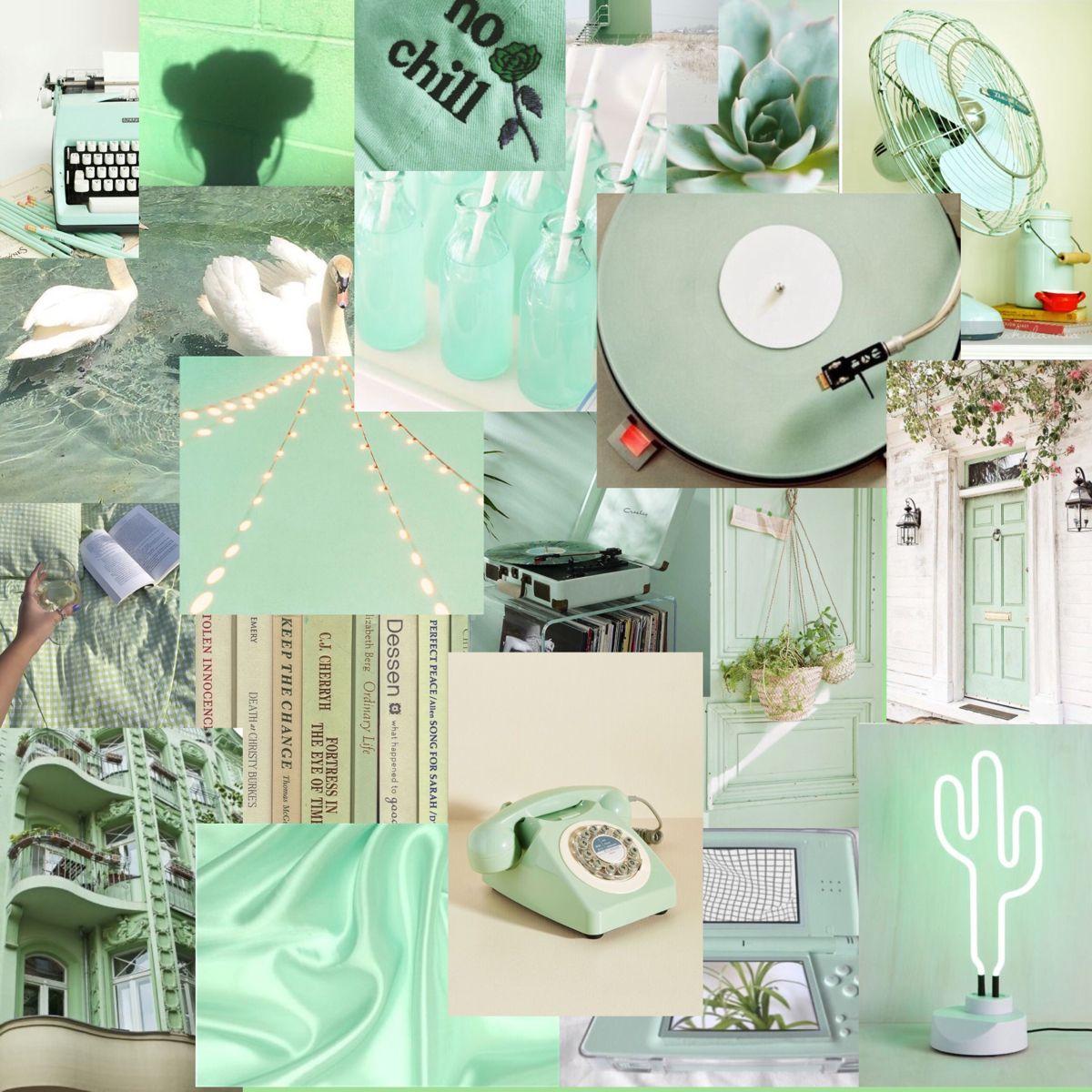 Light Green Aesthetic In 2021 Green Aesthetic Light Green Walls Green Wallpaper
