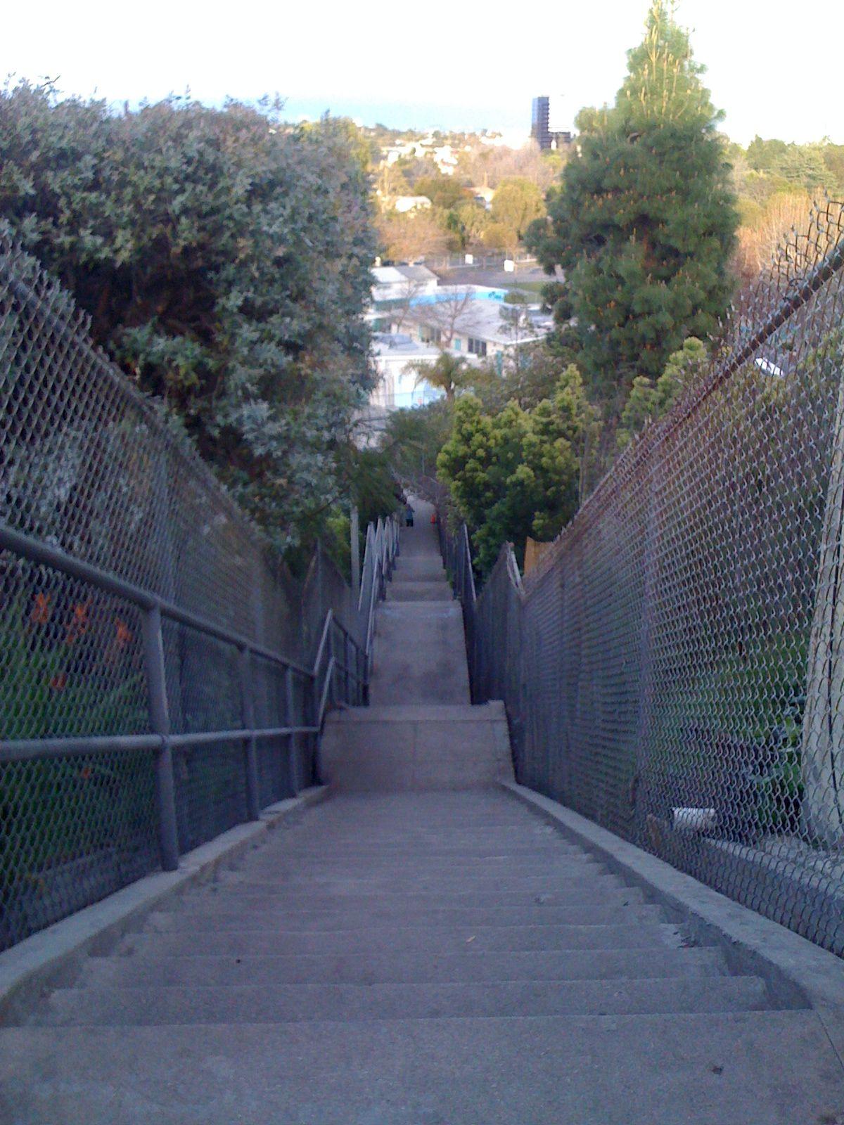 22d77dd0504d01004cb88d928738576e - Mar Vista Gardens Los Angeles Ca