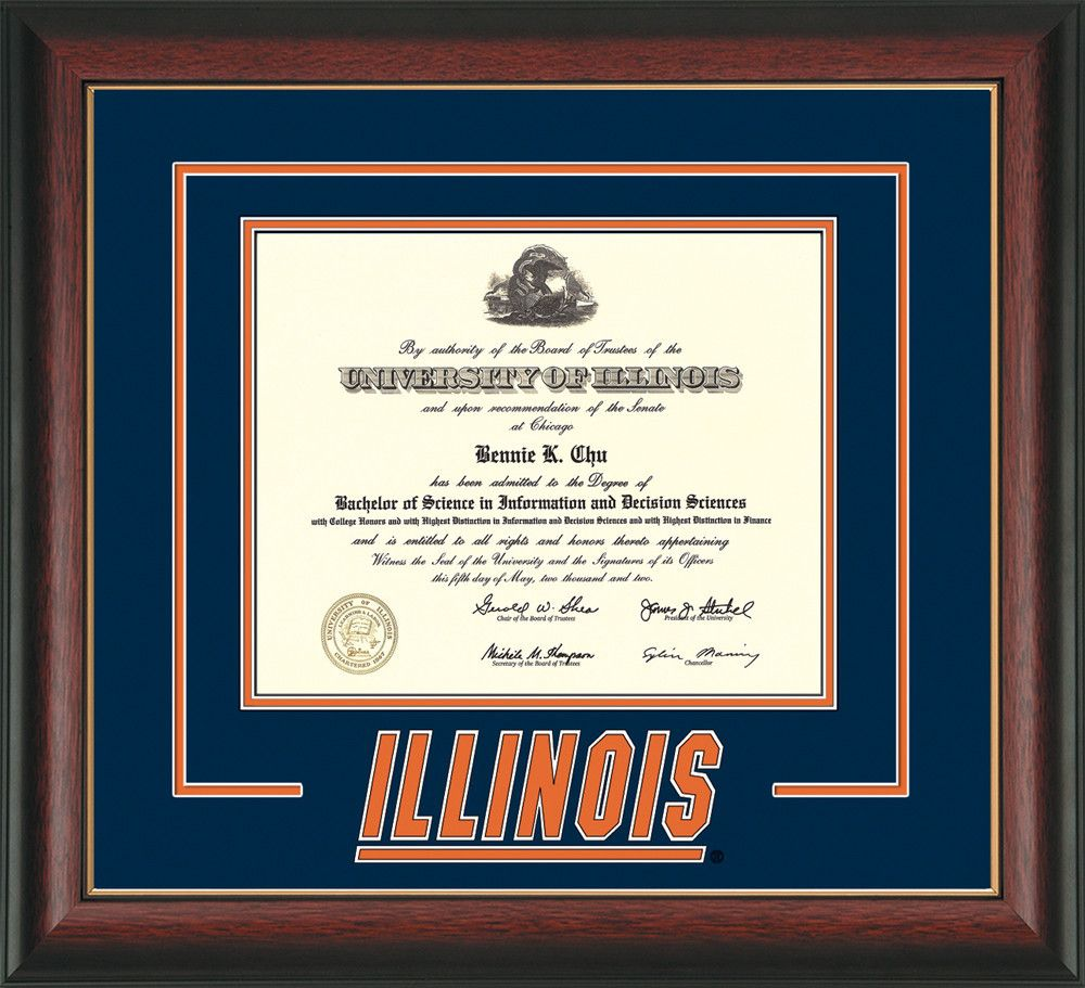 U. of Illinois Diploma Frame-Rose Gold L-w/Illinois 3D-Navy on ...