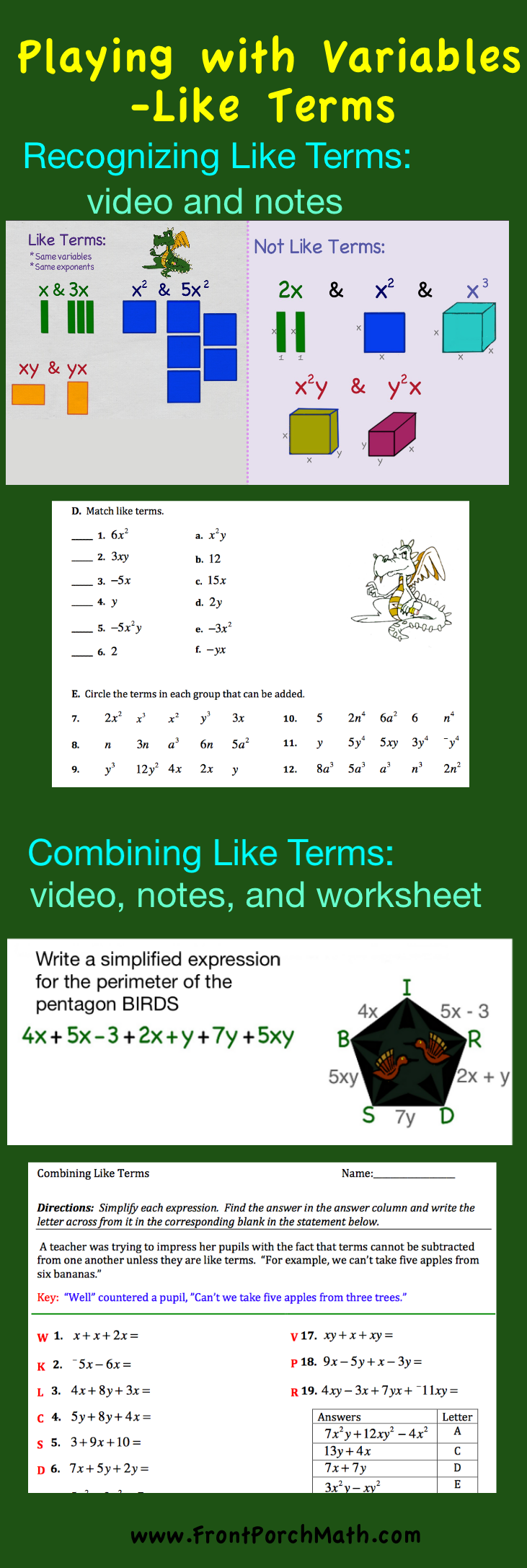 Math Algebra Recognizing Like Terms and Unlike Terms