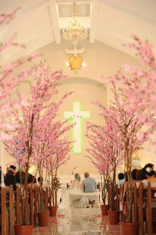 Ceremony Decor Dreamy Cherry Blossom Trees Lined The Church S Aisle Maybe For