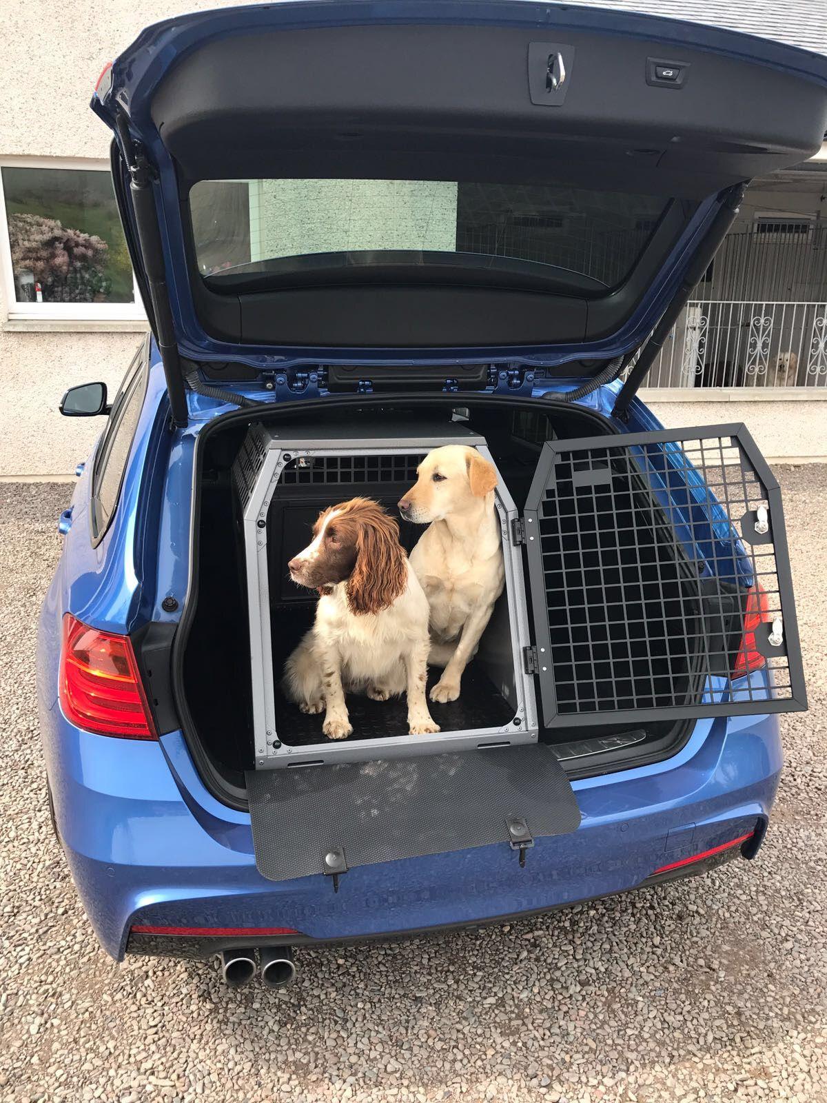 Transk9 Dog Box Safety B23 Bmw 3 Series Touring Labrador Spaniel Transport Safely Dogs Dog Box Dog Friends
