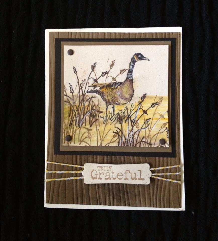 Using Wetlands Stamp set like this layout