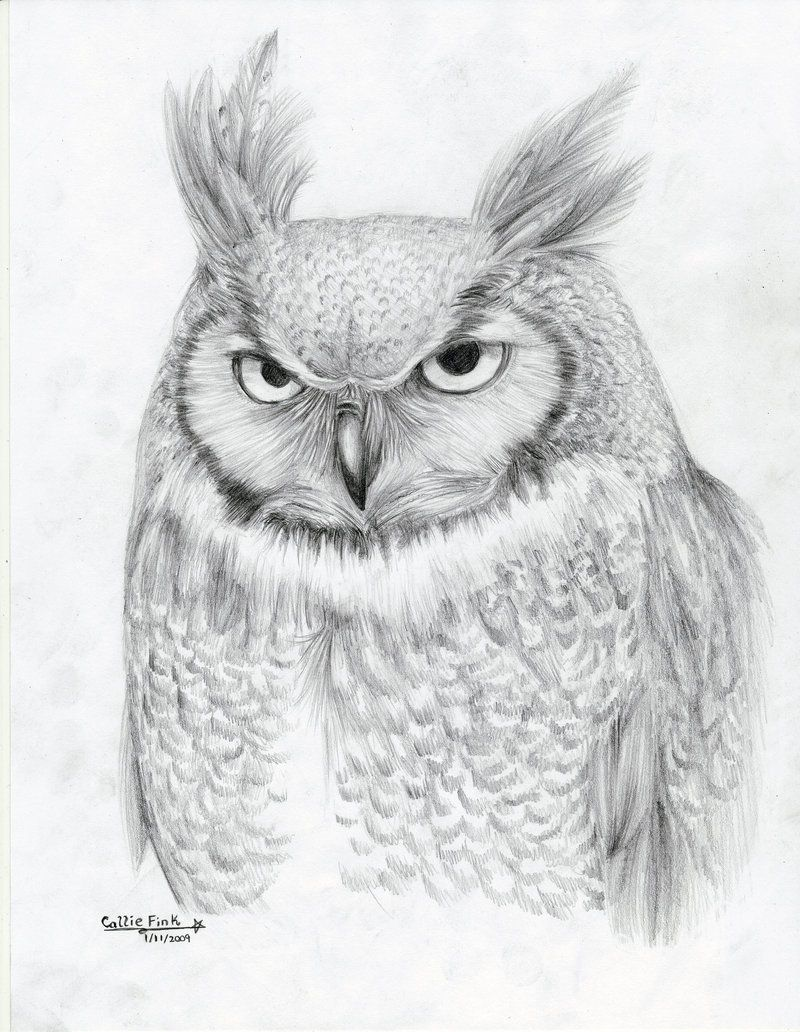 Great Horned Owl by CallieFink on DeviantArt | Drawings ...
