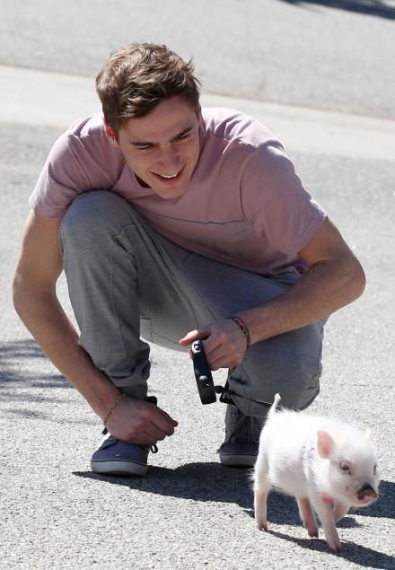 The perfect male specimen! I want a little piggie just like him. What? Oh! There's a guy in this pic? I hadn't noticed!