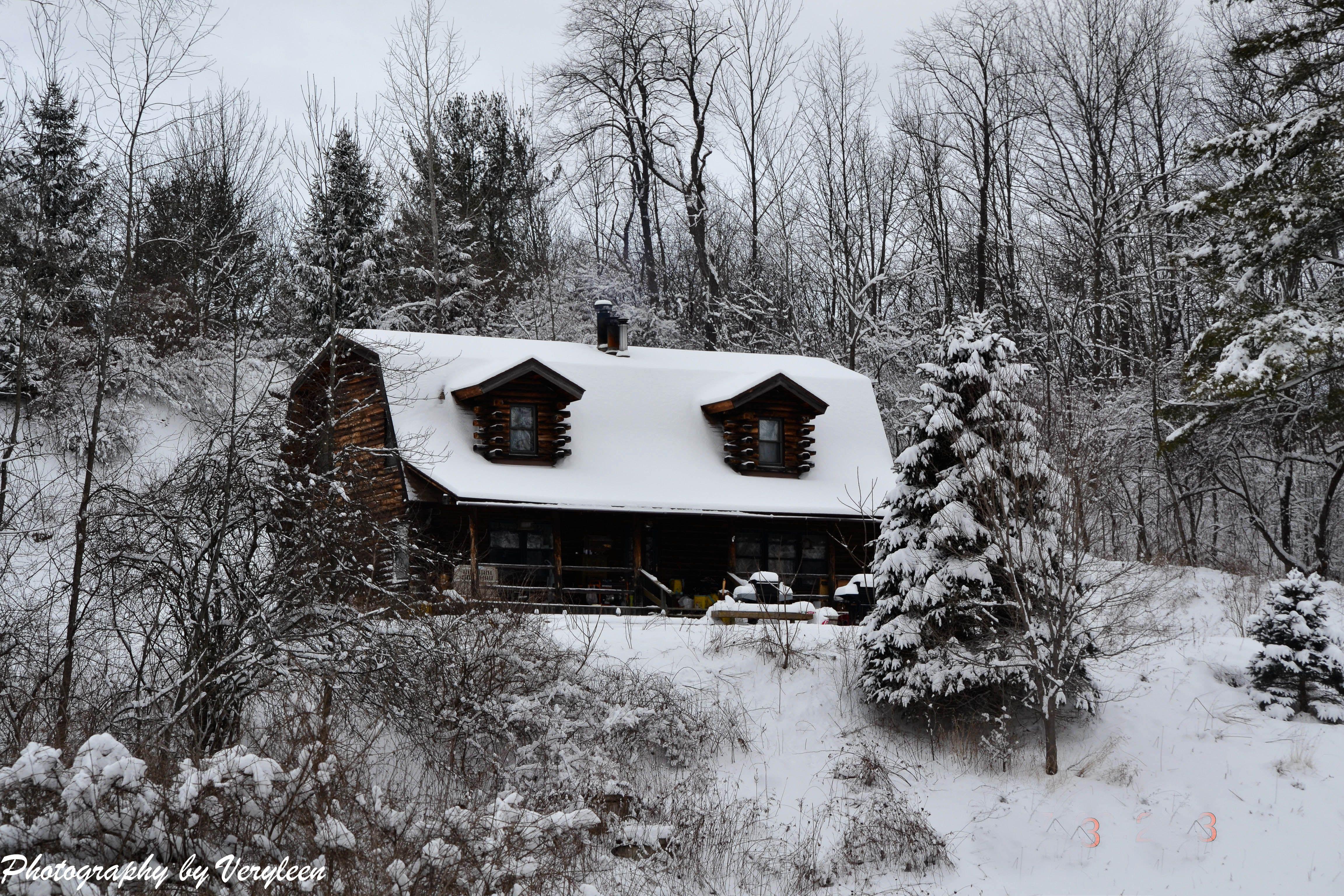 NY winter 2013