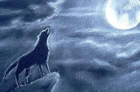 Resultado De Imagen Para Animales Para Dibujar Reales Lobos Como Dibujar Un Lobo Arte Divertido Lobo Aullando