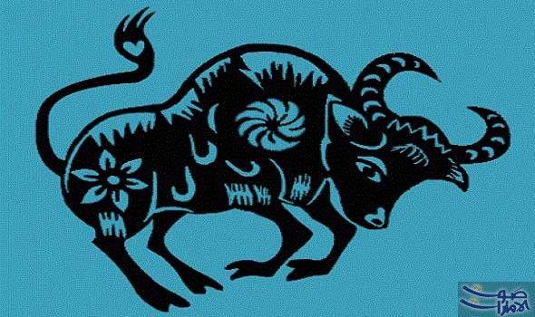 امرأة برج الثور شخصية عنيدة مليئة بالإصرار والعزيمة تتمي ز امرأة برج الثور بروحها الجميلة وامتلاكها لحس فكاهي يأسر المحيط Taurus Art Taurus Bull Taurus Love