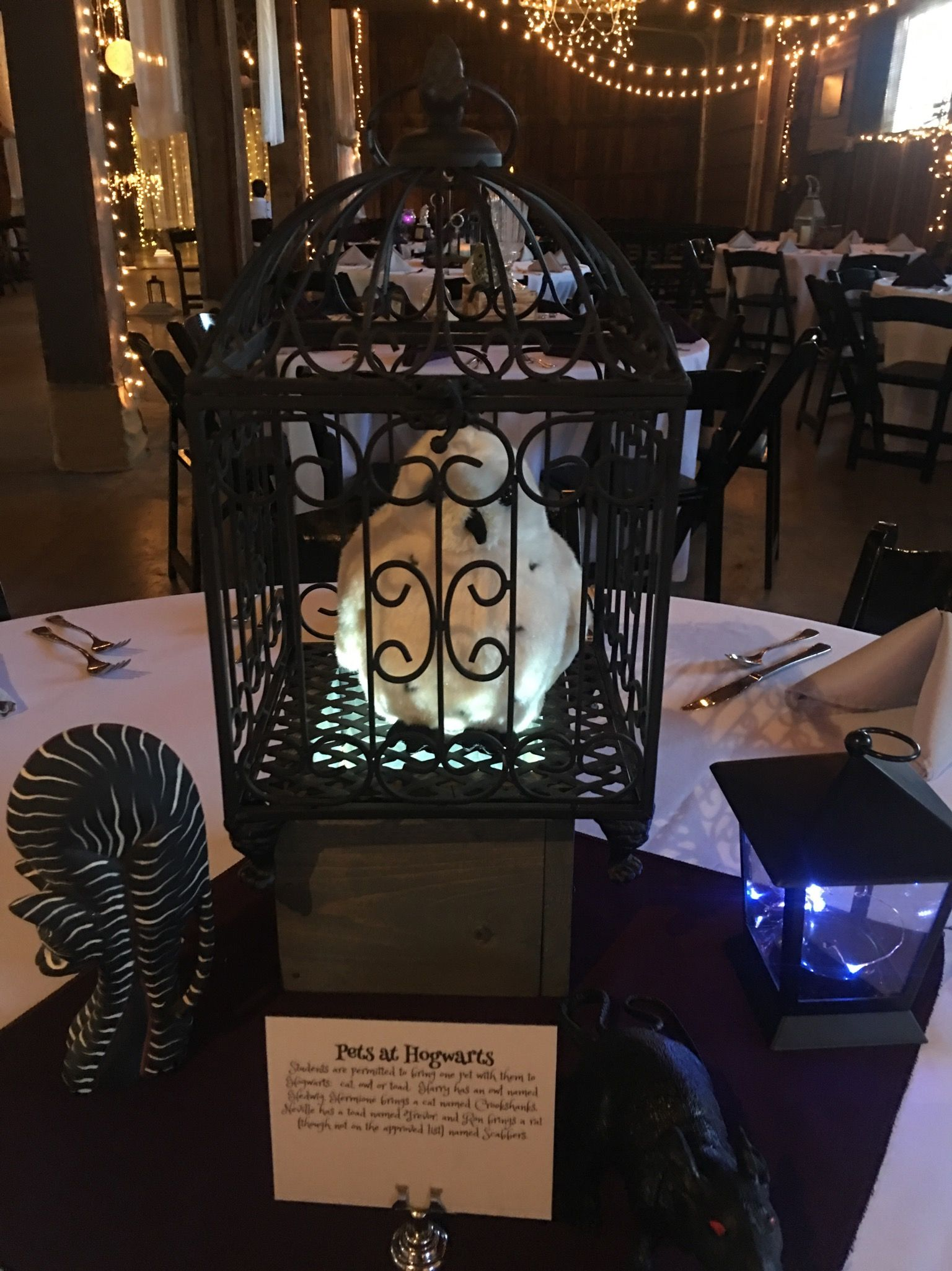 Hedwig centerpiece   Southern wedding venues, Harry potter ...