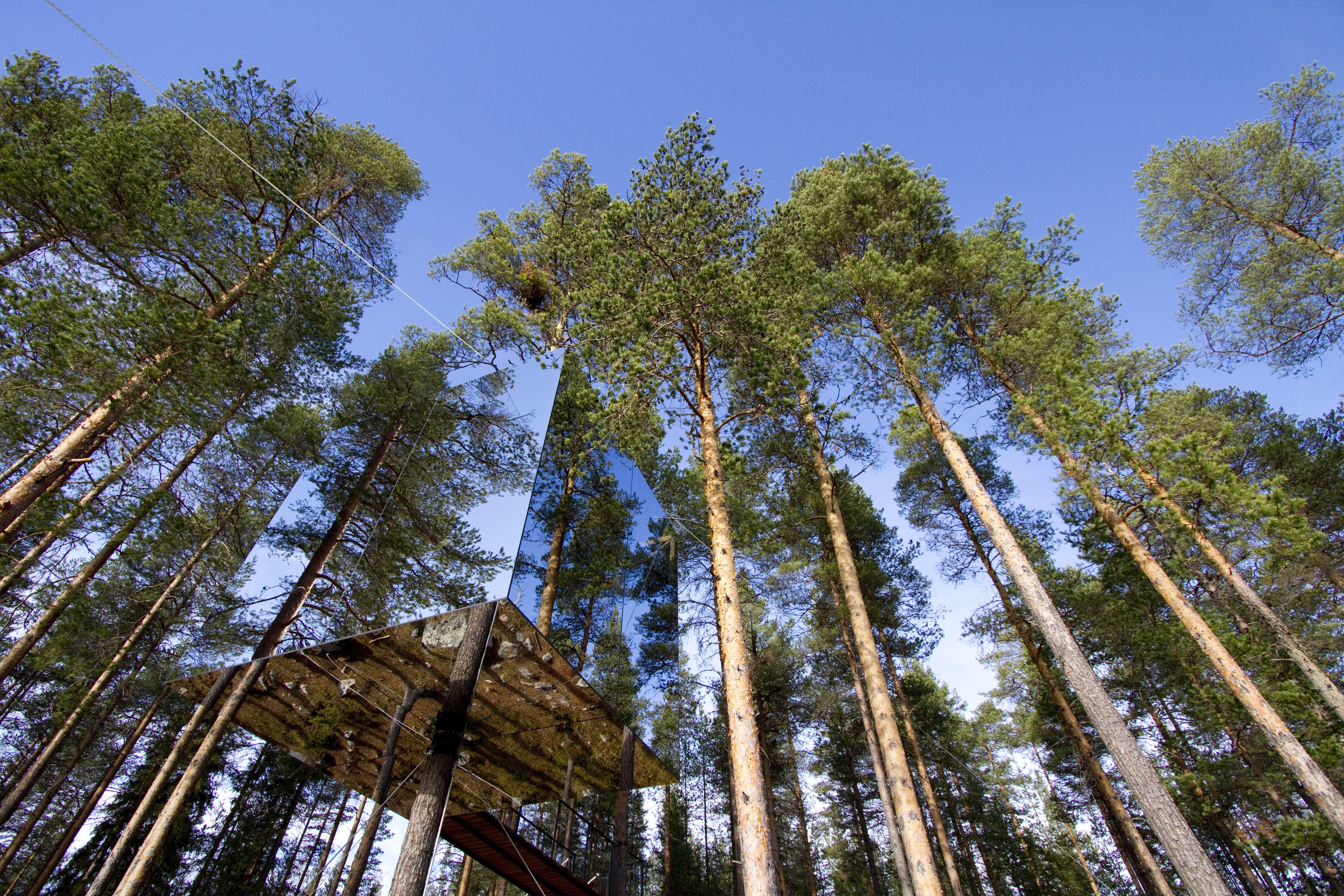 Treehouse Retreats - The Tree Hotel, Mirrorcube