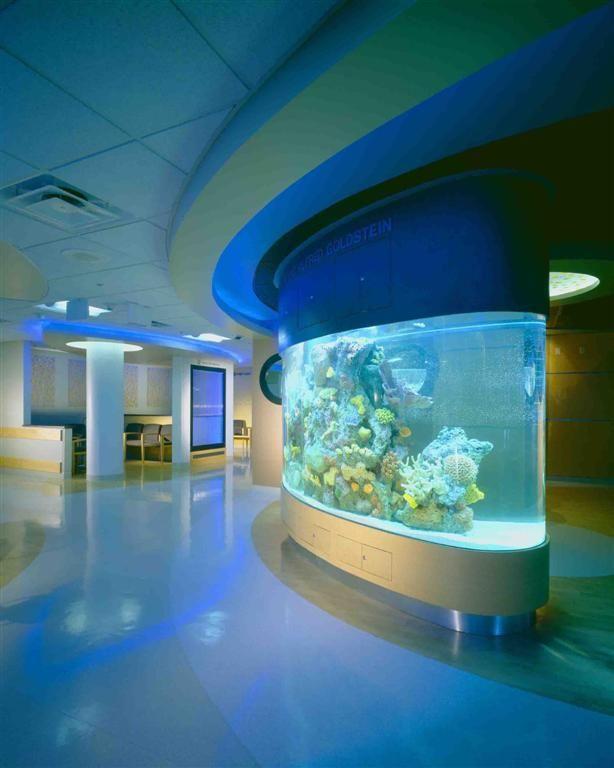 I Want A Huge Saltwater Aquarium Built Into My Wall