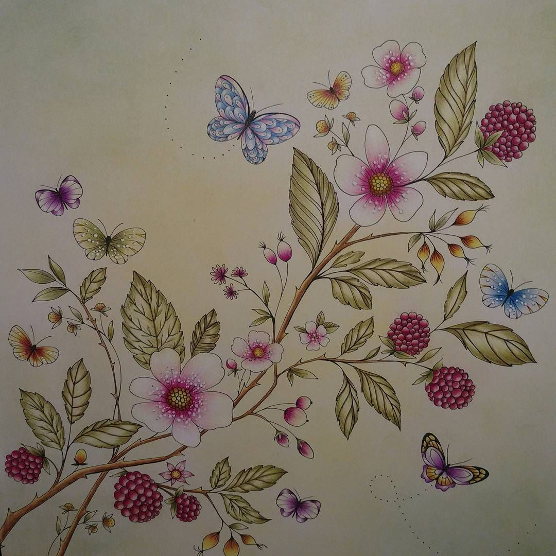 From Joyous Blooms To Color By Eleri Fowler