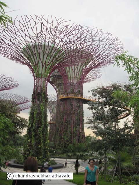 22dc3351d901bb8762a2e4531c01f7d4 - Singapore Flyer And Gardens By The Bay Double Domes Package