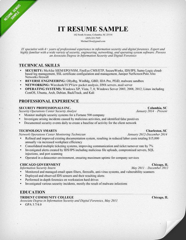 Information Technology IT Resume Sample Tech Goddess Pinterest - resume for servers