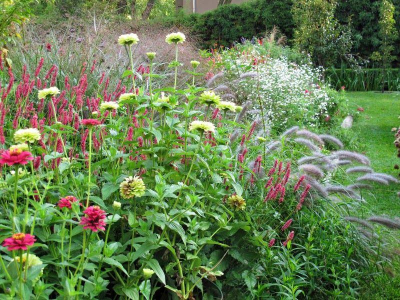 El Blog De La Tabla Jardines Muy Privados En El Jardín De Clara En Buenos Aires Bienvenido Otoño Jardines Diseño De Jardín