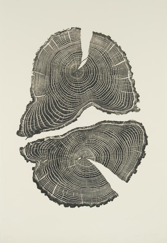 Brian Nash Gill - Woodcut, Acorn